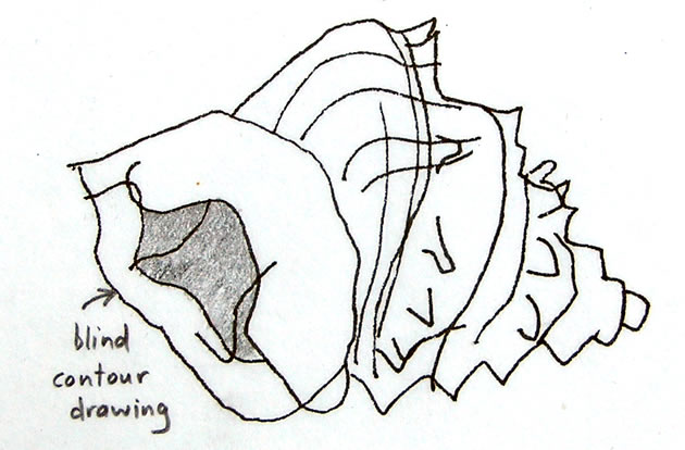 Line Drawing: A Guide for Art Students