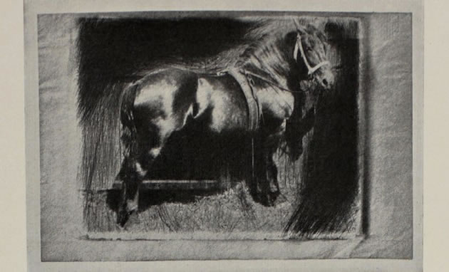 scratched photogravure etching by Frank Eugene