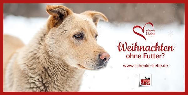 postkarte-schenke-liebe-zur-schenke-liebe-weihnachtsaktion-fuer-tierheimtiere-copyright-tierschutz-shop