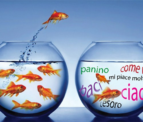 practice-italian-everyday-immersion-ideas-tactics