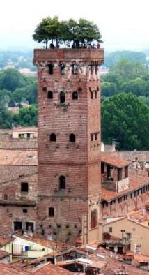 lucca_torre-guinigi
