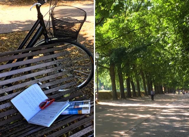 Learning-Lucca-Italian-School-Agnese-Lavorgna-On-line-Italian-classes