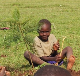 The kids loved the new little trees.