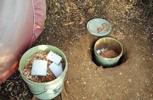 Bucket for poo