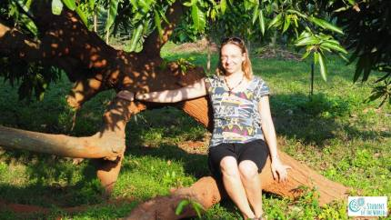 Enjoying evening sun in Auro Orchard