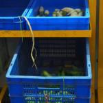 Produce in Pour Tous Distribution Center