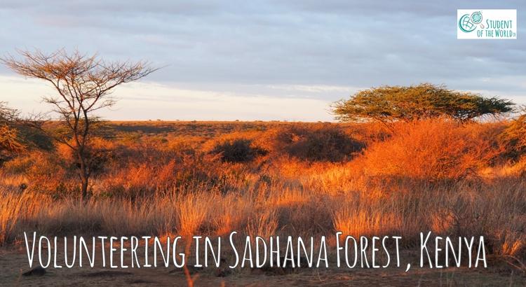 Volunteering in Sadhana Forest Kenya