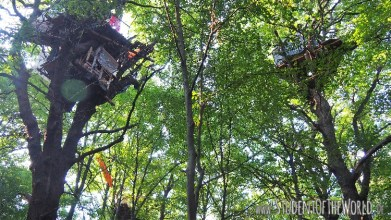 Tree Houses - Sanctuaries in Hambacher Forst