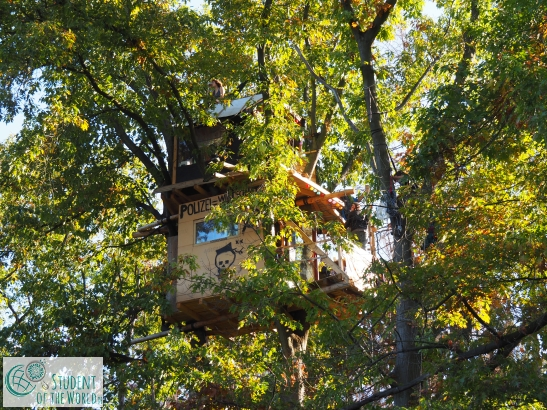 Newly built tree house