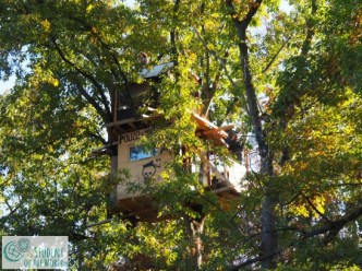 Newly built tree house