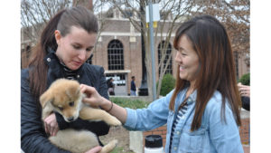 A student cradles a hug puppy in her arms.