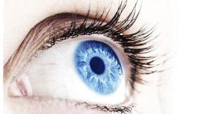 online eye clinic project