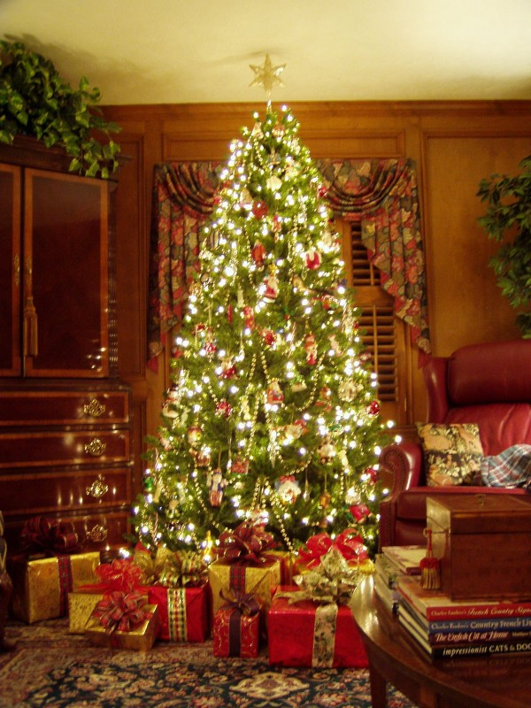 Famous cute christmas tree images