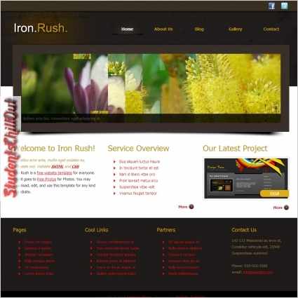 free html website template download