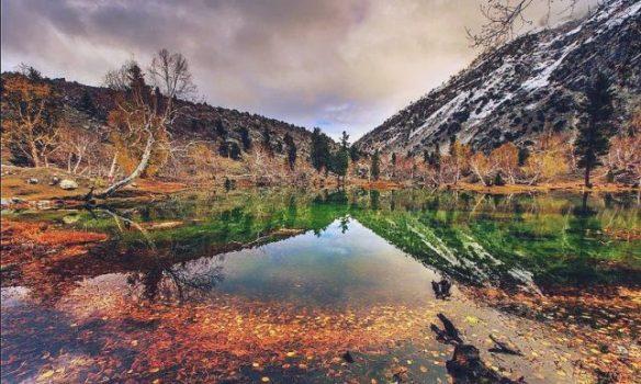 Naltar_Valley