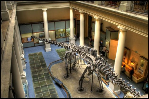 Museo Rio de la Plata