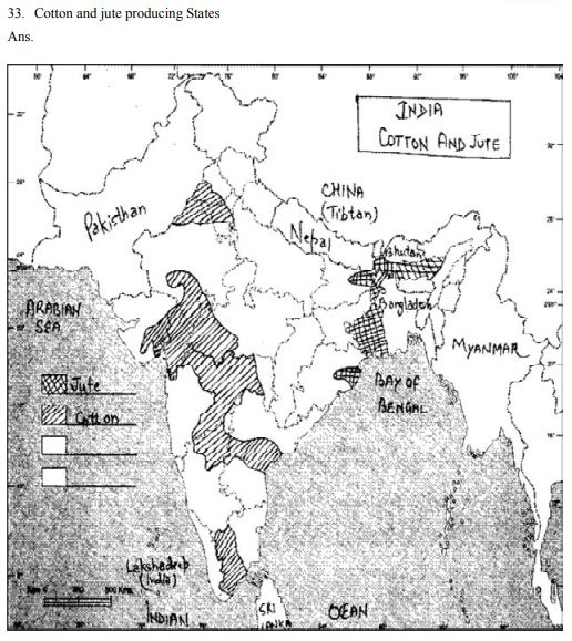 CBSE Class 12 Geography Map Cotton and jute producing