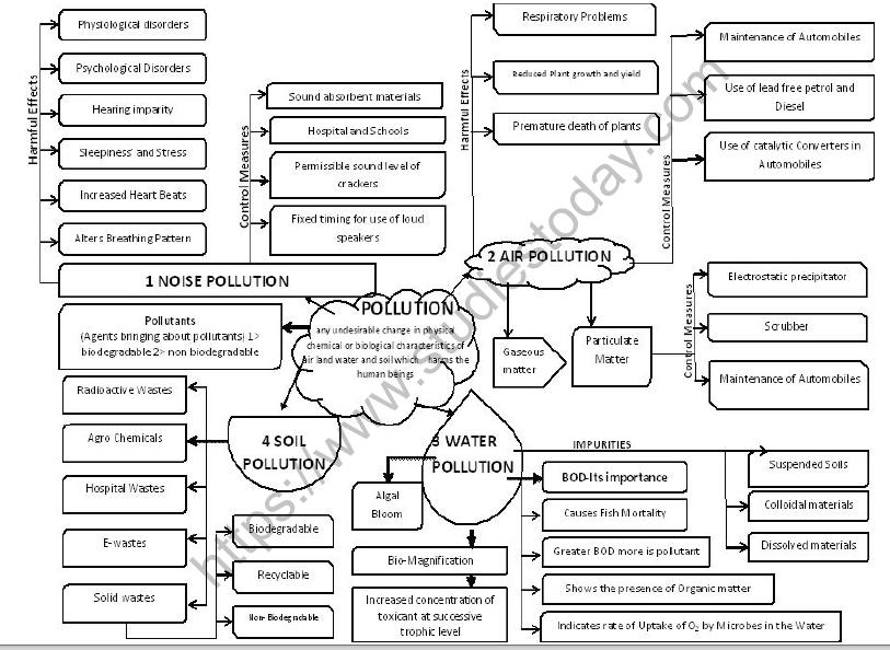 CBSE Class 12 Biology Environmental Issues Mind Map