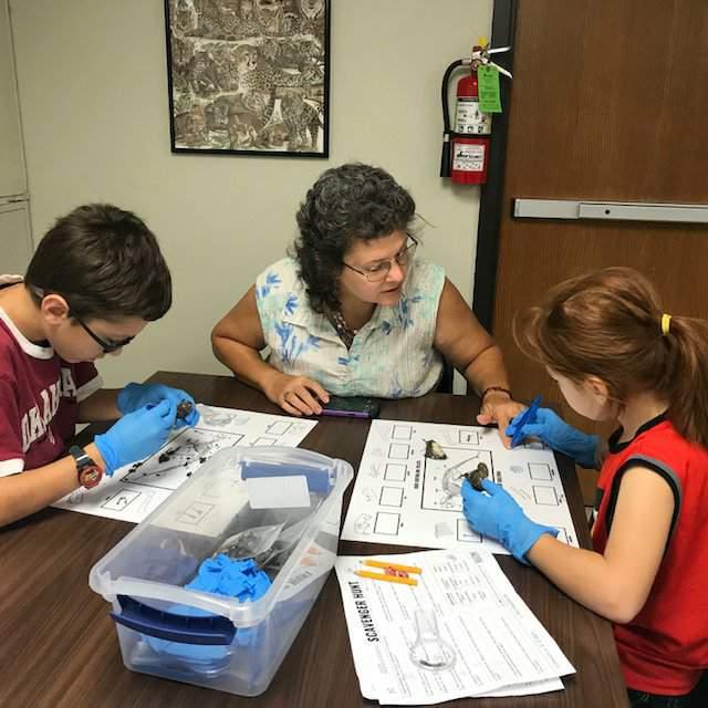 Susan Cro homeschooling her grandchildren using Studies Weekly