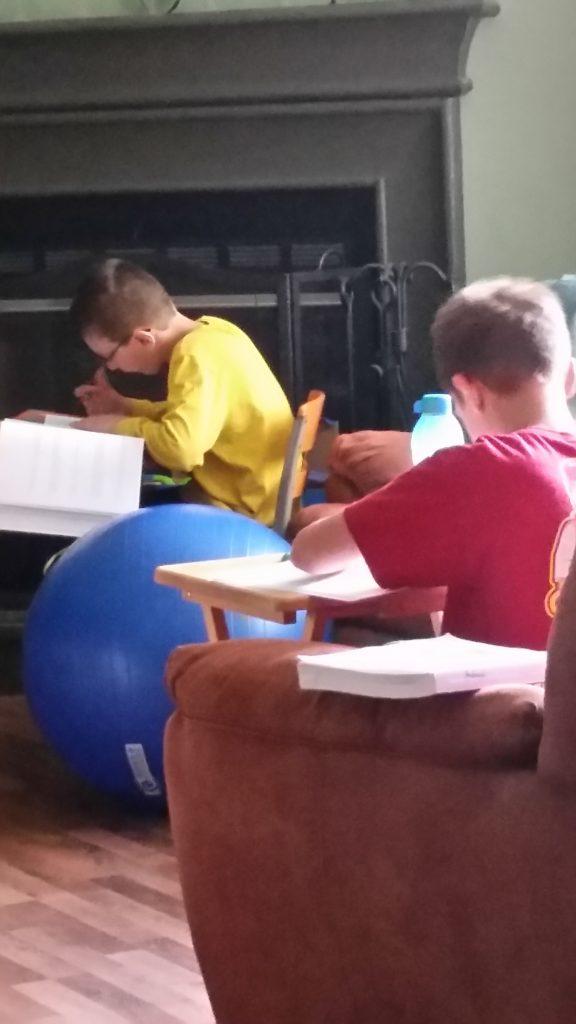 Studies Weekly homeschooling
