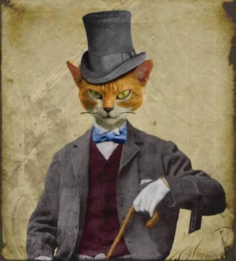 Image Result For A Cat Returns