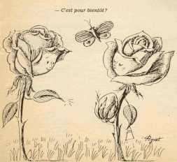 les-amoureux-de-peynet-dessin-art-saint-valentin-65