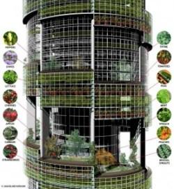 Ferme verticale imaginée par l'architecte Blake Kurasek, 2008. Aperçu de ce qui pourrait être cultivé à l'intérieur, sur les différents niveaux.