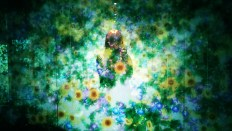 Flowers_and_People-TeamLab