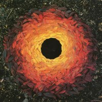 Andy Goldsworthy, l'automne et le Land Art