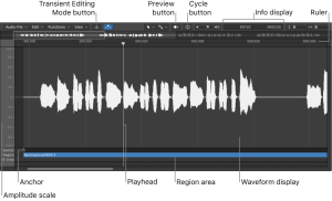Shows Audio File Editor interface