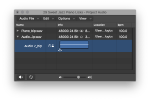 Shows the controls at the bottom of the Project Audio Browser window