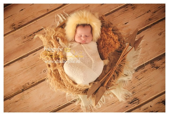 newborn fotoreportage in thema, met thema's