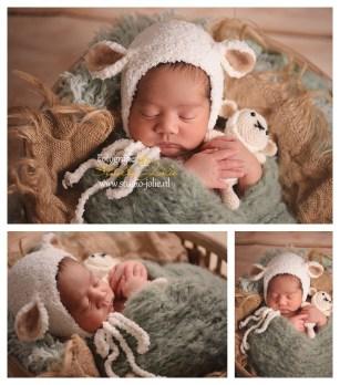 newborn-fotoshoot-jongen-schaapje.jpg