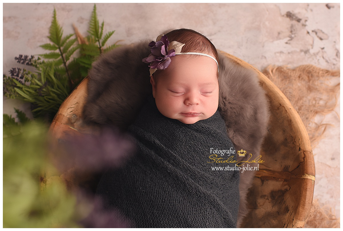 newborn shoot heenvliet