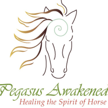 Pegasus Awakened