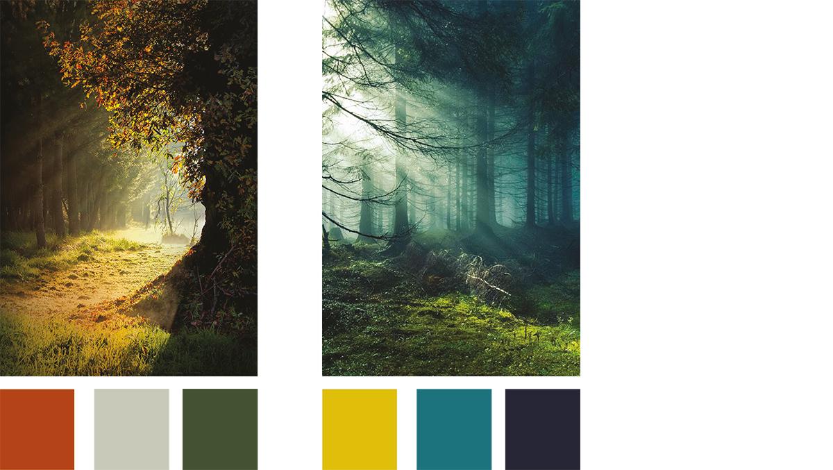 kleur seizoenen