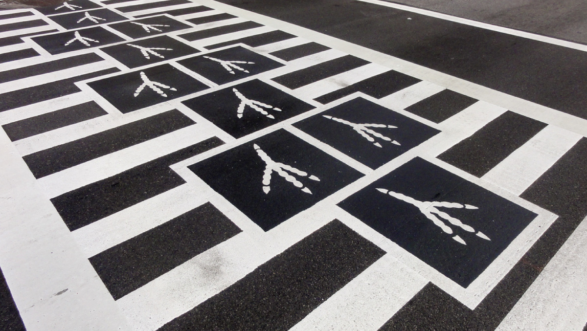 strook2-Hopscotch-Crosswalk-Colossus-overhead