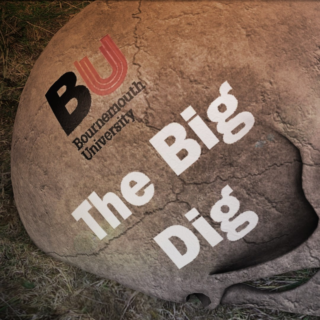 Archaeology Courses at Bournemouth University – The Big Dig