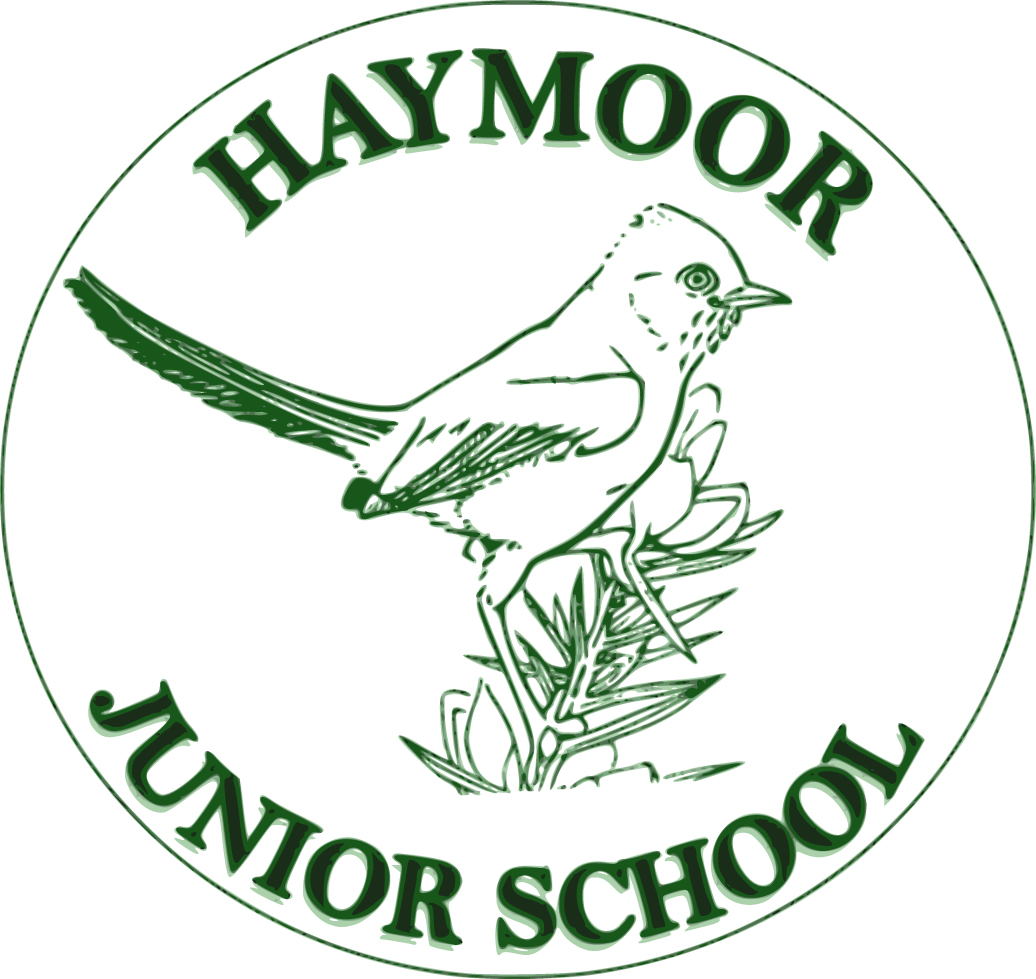 TEACH Trust – Haymoor Junior School
