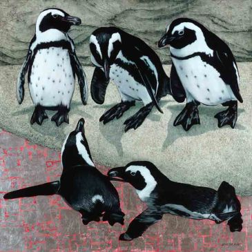 The Studio Art Gallery - African Penguins