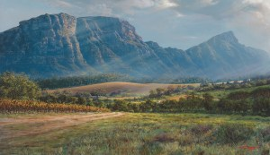 The Studio Art Gallery - Andrew Cooper - Constantia Valley From Hohenort AVE