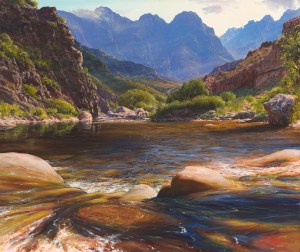 The Studio Art Gallery - Andrew Cooper - Elandspad River Du Toits Kloof