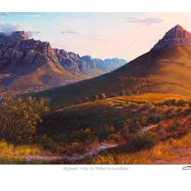 The Studio Art Gallery - Andrew Cooper - Signal Hill to Table Mountain Limited Edition Print