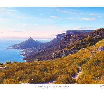 The Studio Art Gallery - Andrew Cooper - Twelve Apostles to Lions Head Limited Edition Print