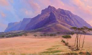 The Studio Art Gallery - Andrew Copper - Devils Peak Table Mountain