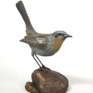 The Studio Art Gallery - Cape Robin on Rock