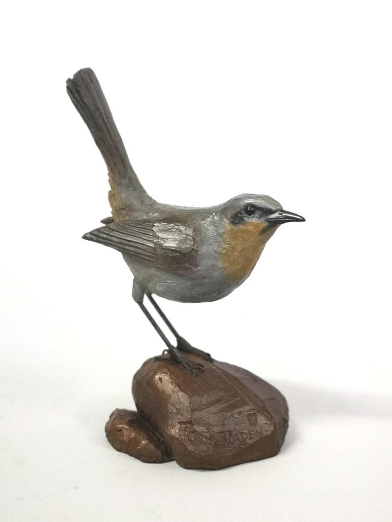 The Studio Art Gallery - Cape Robin on Rock