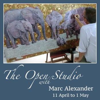 The Studio Art Gallery - Icon Image - The Open Studio - A Solo Exhibition by Marc Alexander
