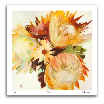 The Studio Art Gallery - Proteas I by Yola Quinn - Archival Print on Paper