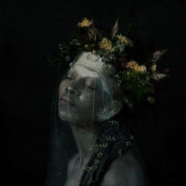Annie Kruyer | The Studio Art Gallery - 'Thicker Than Blood V'
